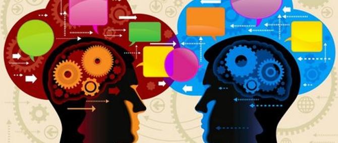 social-brain-3-2